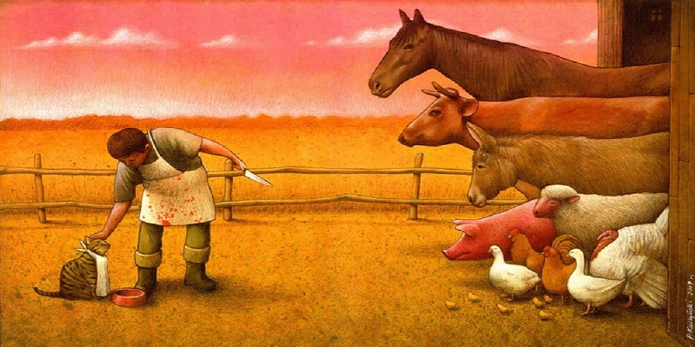 Double standards, Amour, Animaux